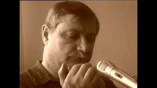 (The Beatles) Ob-la-di, ob-la-da - Harmonica diatonic