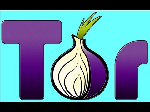 """Tor Browser Presentation, """"Maintaining Privacy in a Surveillance State"""" by altf4  09/01/2013"""