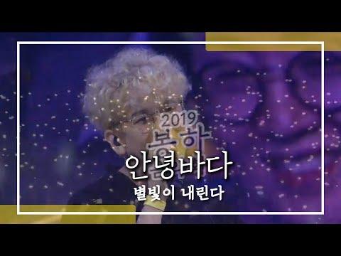 안녕바다_별빛이 내린다 (feat. 휴대폰 별빛)  / 봉하음악회 2019