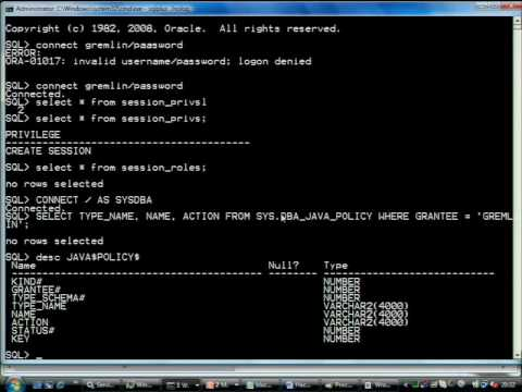 Black Hat DC 2010: Hacking Oracle 11g 2/5