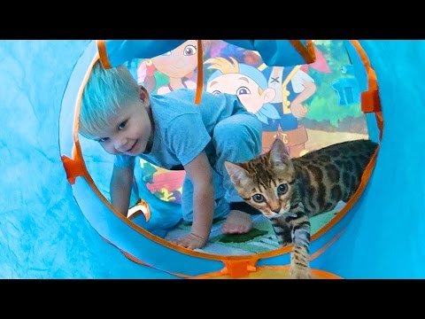 TODDLER AND KITTEN TRAPPED IN PLAY TUNNEL!