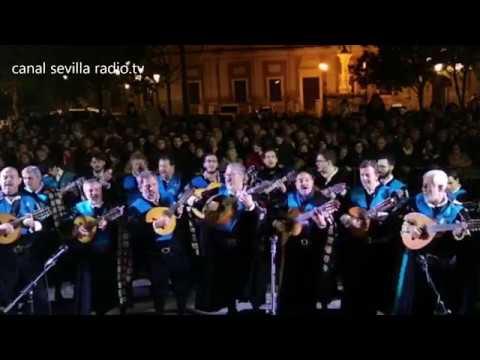TUNAS UNIVERSITARIAS DE SEVILLA, DIA DE LA INMACULADA, CANAL SEVILLA RADIO.TV