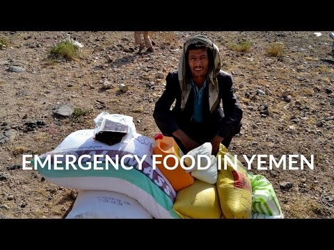 Food Aid in Yemen (2016)