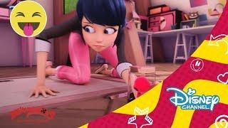 Las Aventuras de Ladybug: Locoresumen 6 | Disney Channel Oficial