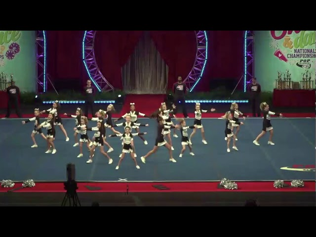 Vipers2018 Cheer