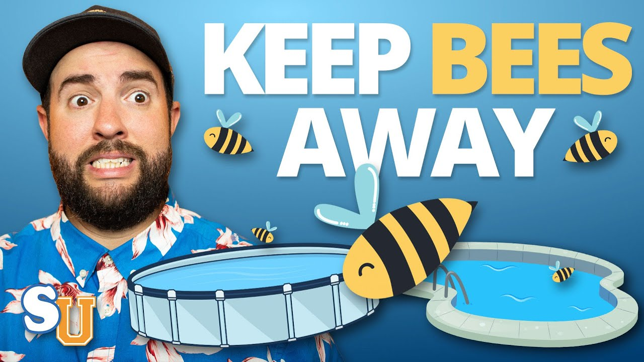 How To Keep BEES and WASPS Away From Your POOL | Swim University