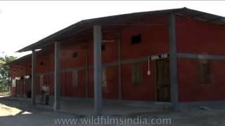 Donyi Polo Tea Estate, North East India