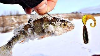 Как ловить окуня на силикон, съедобную резину зимой? Секреты ловли окуня на силикон зимой!