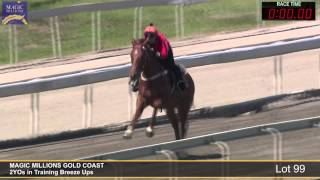 Lot 99 - 2YOs in Training Breezeup Thumbnail