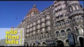 Taj Mahal Hotel : one of Mumbai