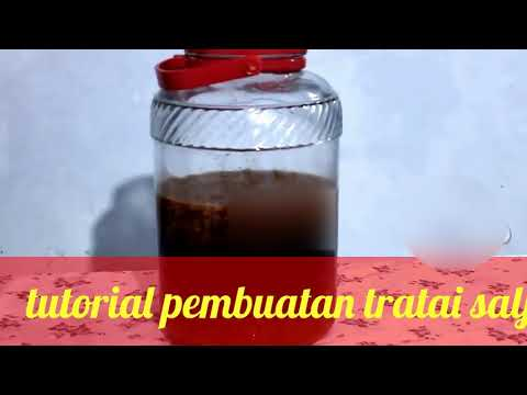 cara fermentasi bunga teratai salju