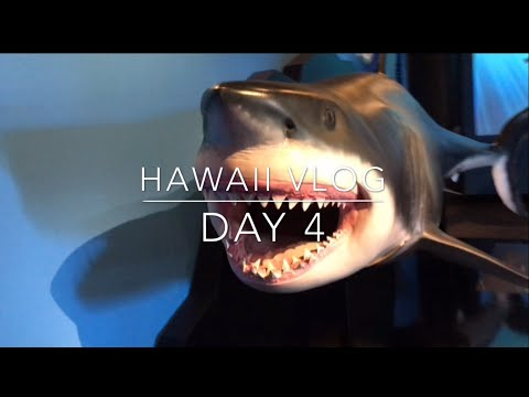 THE BISHOP MUSEUM | HAWAII VLOG DAY 5