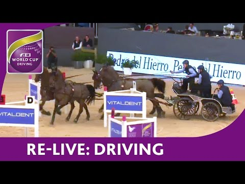 Re-Live - FEI World Cup™ Driving 2015/16 - Madrid