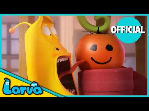 LARVA - TOMATO | Best Cartoon Movie | Cartoons For Children | LARVA Official