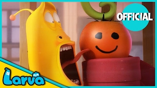 LARVA - TOMATO | Best Cartoon Movie | Cartoons For Children | LARVA Official