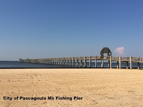 My Adventure bringing you, Painting Pascagoula Ms