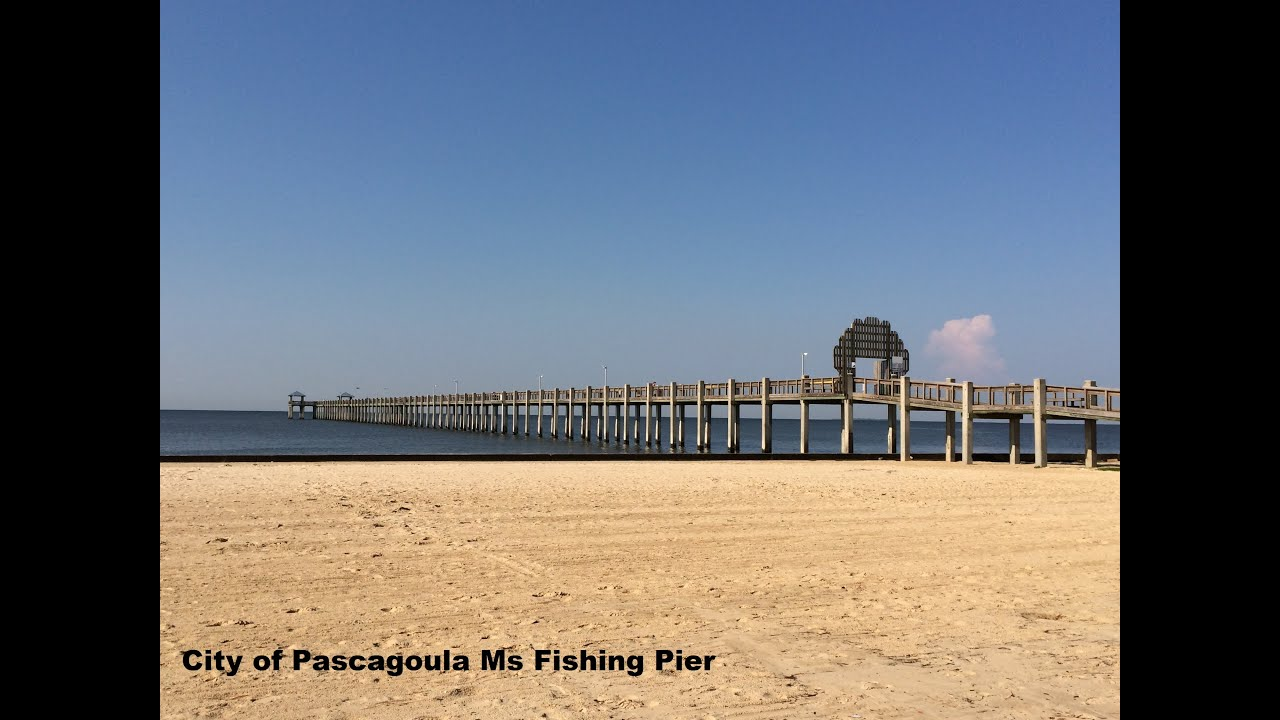 My Adventure Bringing You Painting Pascagoula Ms