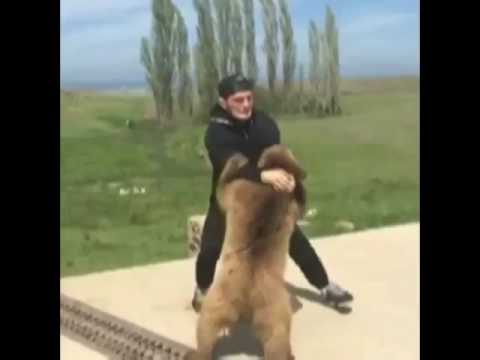 Хабиб Нурмагомедов с медведем