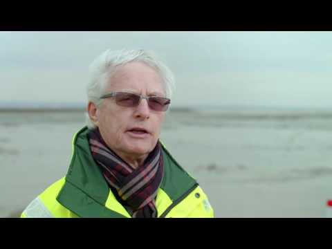 Creating nature reserves: how has DP World London Gateway developed two new intertidal mudflats?