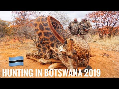 Hunting In Botswana|Nel Safaris 2019