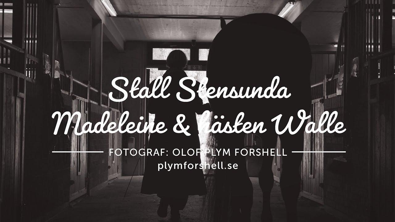Stallet Stensunda och hästen Walle