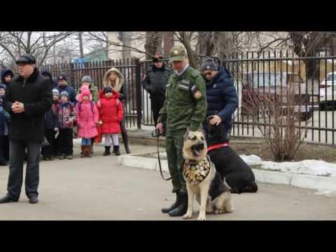 Ребенок перестал питомник собак в армавире ничем занятое время