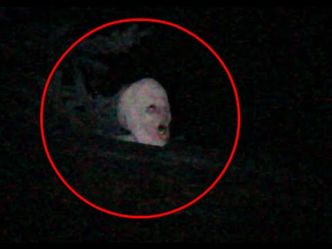 Alien Creature Caught On Video Tape Climbing On Roof