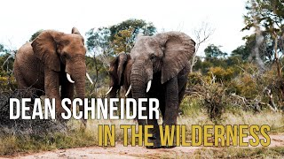 The fascinating Wilderness -Dean Schneider