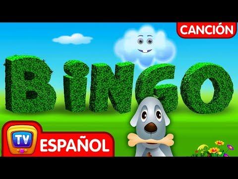 BINGO Perro Canción   Canciones Infantiles en Español   ChuChu TV