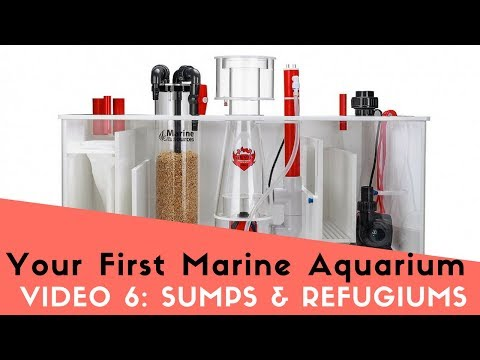 How To Set Up Your First Marine Aquarium, Video 6: Sumps, Refugiums, And HOB's