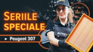 Instrucțiuni video pentru PEUGEOT 307