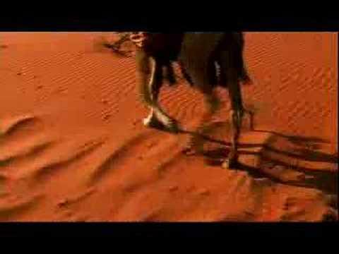 Neil Morrisey in Jordan