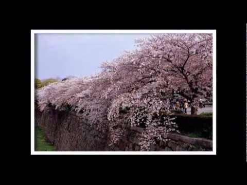 Đất nước Nhật Bản (Bài tập về nhà)