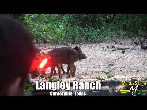 2 Hogs 1 Shot Crossbow – Marcus & Chris Hunting