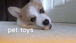 Pet Toys (Playful Pets) | The Pet Collective
