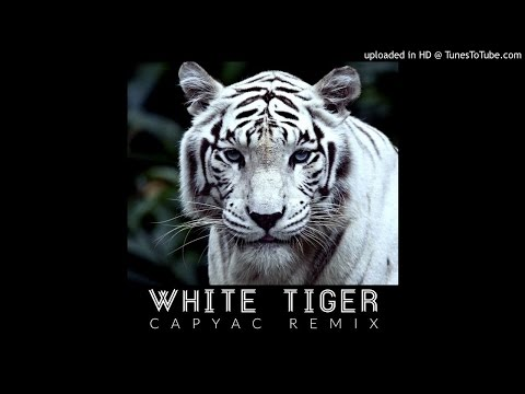 Izzy Bizu - White Tiger (Capyac Remix)