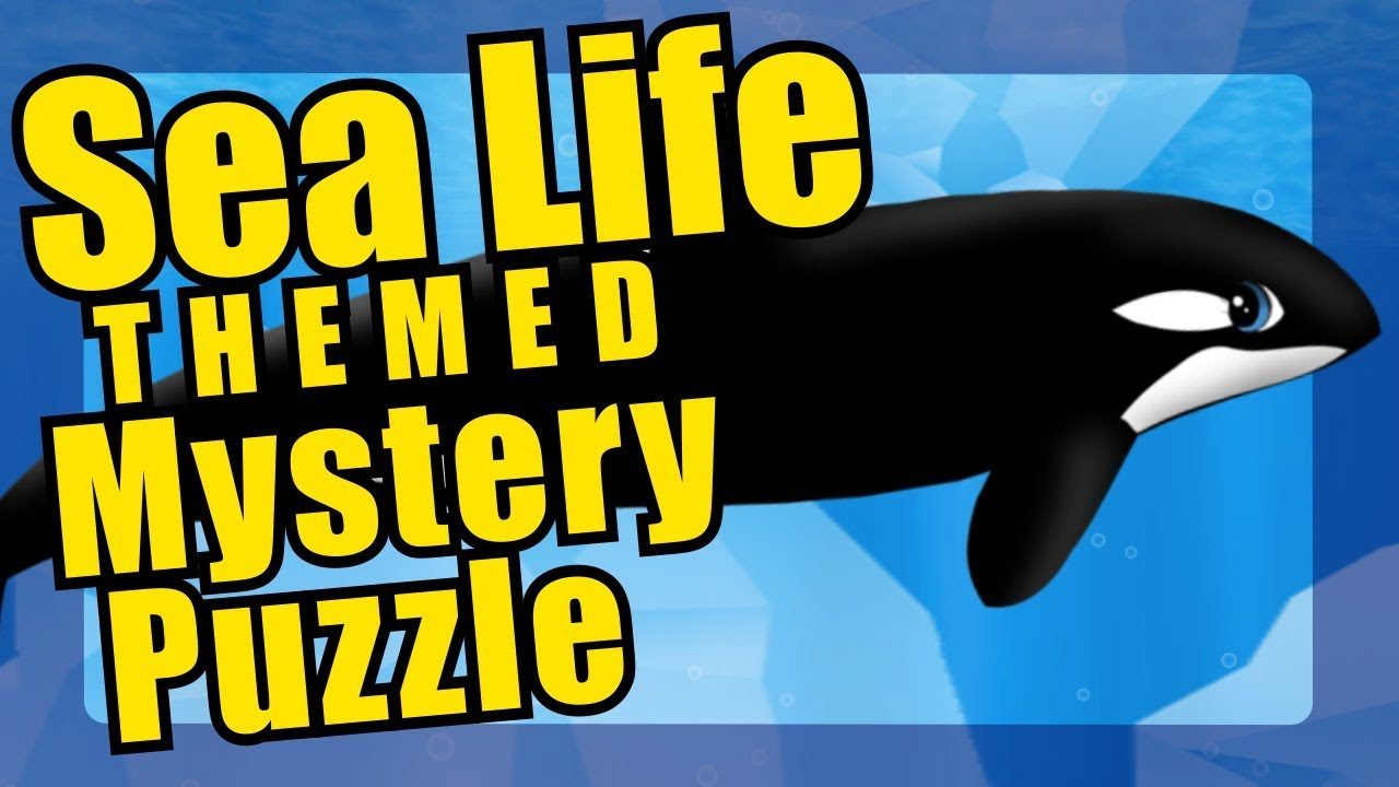 orca icy waters puzzle killer whales youtube