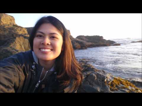 Travel Diary || Highway 1 to Fort Bragg