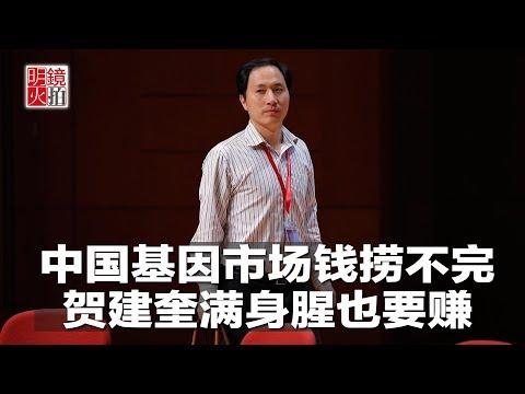 明镜焦点|中国基因市场钱捞不完,贺建奎满身腥也要赚(20181130)