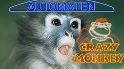 CRAZY MONKEY spielmachine + BONUS GAME! Spiele auf dem Spielautomaten online und ganz free!
