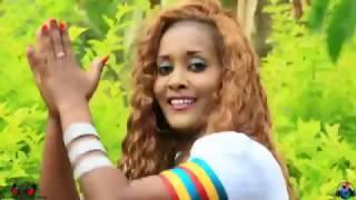 New Ethiopian Music 2016 DJ Habte Alena Amaharic Mix vol 14  ( New Style )