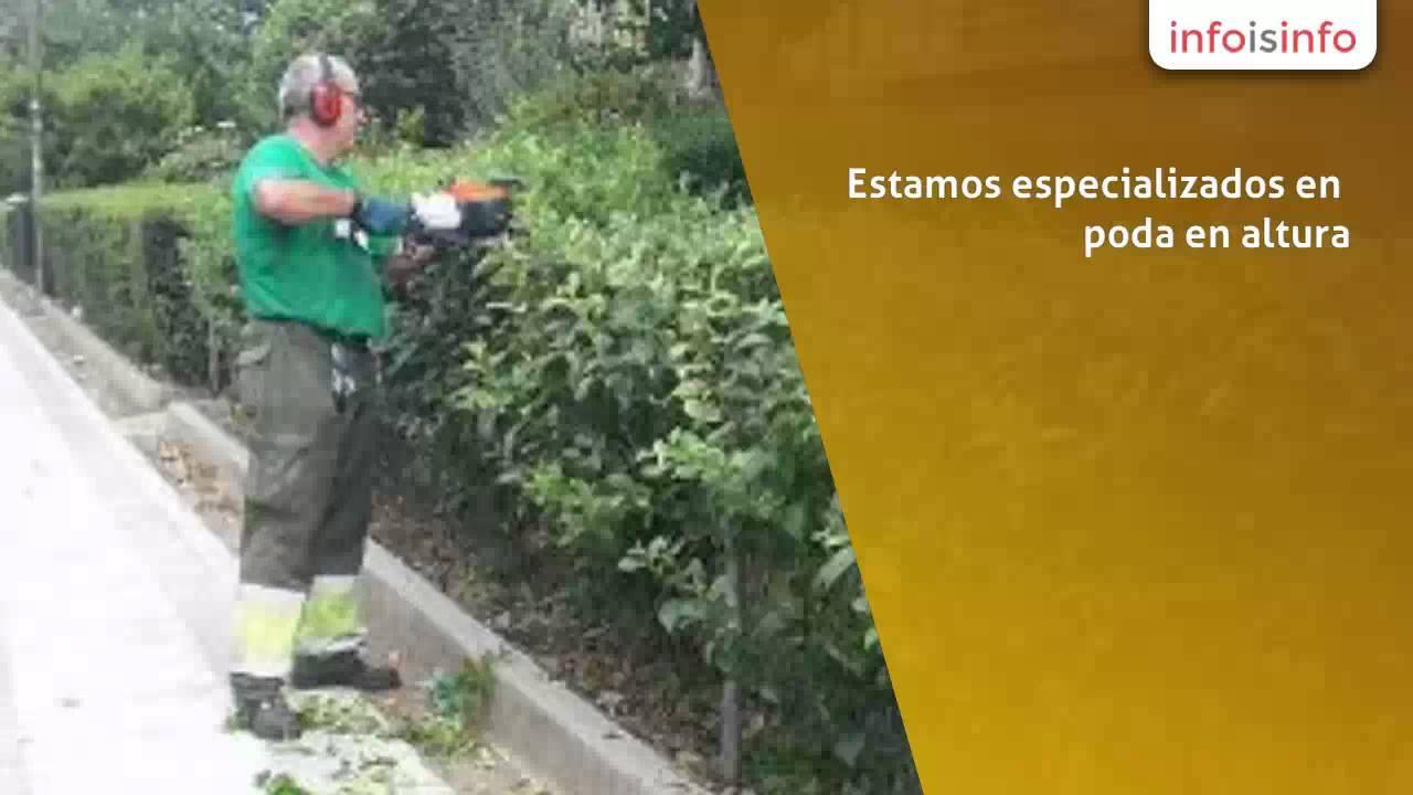 Paisajismo en madrid jardineria y mantenimiento carlos - Paisajismo madrid ...