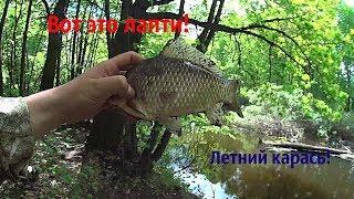 Рыбалка в Башкирии: лучшие места для рыбалки, сезоны рыбалки