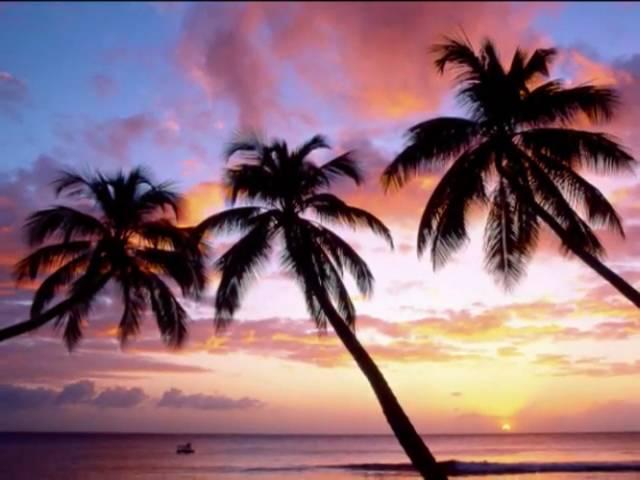 Bobby Caldwell ~ Perfect Island Night