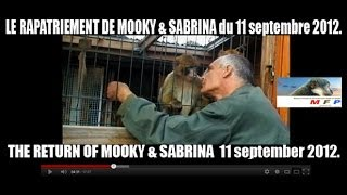 MFP. LE RAPATRIEMENT DE MOOKY & SABRINA-THE RETURN OF MOOKY & SABRINA du 11 septembre 2012.