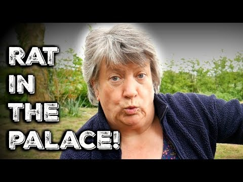 There's A Rat In The Palace!
