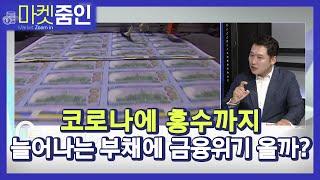[마켓줌인]  韓 '부채의 역습' 경고등 켜질까? / 머니투데이방송 (증시, 증권)