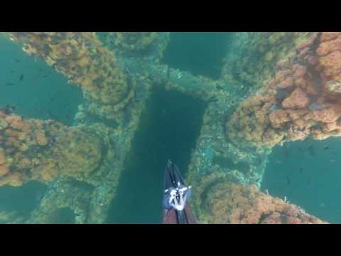 Spearfishing Red Snapper Gabon Oil rig