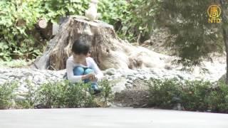 《幸福有家》 梦✿幻✿花✿园 (下)