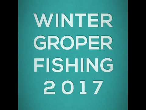 Groper Fishing 2017
